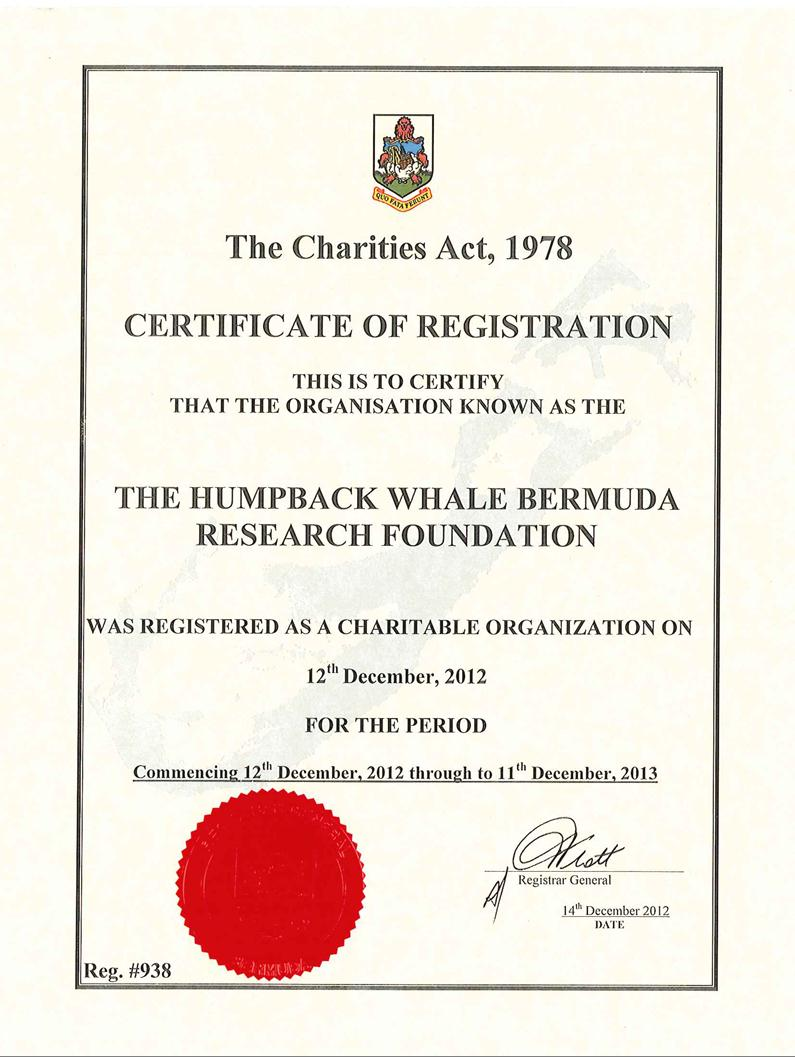 cert_-_the_humpback_whale_bermuda_research_foundation