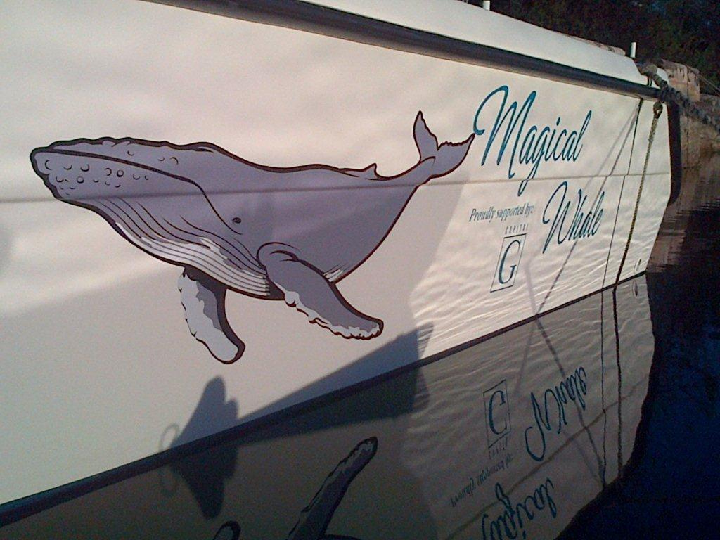 magical_whale_boat_232